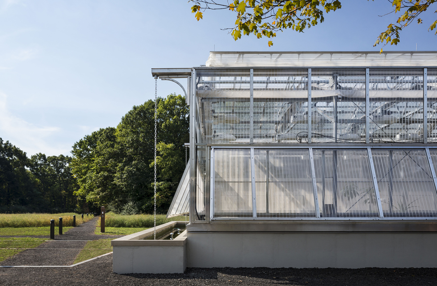 <p>A research-grade greenhouse, connected to classrooms, provides botanical study space and the opportunity to grow food year-round. A seasonal garden sits in the meadow for expanded production and programming. Rainwater collection systems supply greenhouse and garden irrigation.</p>